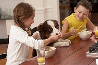 Children (6-8) at table feeding dog, smiling