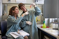 Teamwork in the cell culture laboratory. Laboratory, Fundación Inbiomed, Genetrix Group. Center for research in stem cells and regenerative medicine. ...