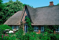 Reed, roofed, house, Keitum, Sylt, Schleswig-Holstein, Germany
