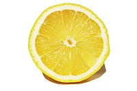 Cross section of a lemon with white background