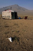 A mongolian hunter near a tent in Mongolia with cow skull lying on the ground