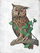 Illustration of an eurasian eagle owl