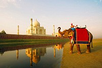 Young man riding an elephant on the riverbank, Taj Mahal, Agra, Uttar Pradesh, India