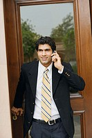Businessman talking on a mobile phone (thumbnail)