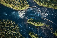 River rapid in forest area, aerial view. Vindel River. Lappland. Sweden