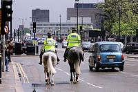 Rear view of two policemen riding horses on road