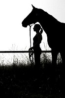 Silhouette of young woman holding horse with rein