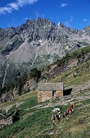 A family walking at the Alpe Sponda, high above the Valle Leventina  Ticino, Switzerland