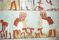 geography/travel, Egypt, agriculture, peasants threshing grain, mural painting, tomb of Menna, El Qurna, circa 1422/1411 BC, 18th dynasty, new kingdom...