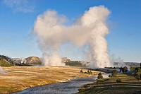 Morning geysers in Yellowstone National Park. Wyoming. USA