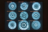 Forensic database of bullet casings  Light micrograph of nine different bullet casings, forming a database used to help identify bullet casings found ...