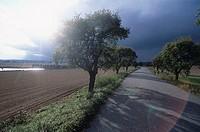Czech republic, nags, field-landscape, country road, thunderstorm-mood, back light, landscape, fields, field, street, trees, avenue, cloud-mood, thund...