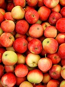 Apples, red, many, detail, food, mixed fruits, newly, freshness, juicy, nutrition, healthy, natural, seasonal, palatable, summers, vitamins, vitamin-r...