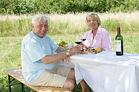 Senior-pair, smiles, sits, wine glasses, beer tent-set, garden, series, people, seniors, 60-70 years, pair, happily, cheerfully, partnership, relation...