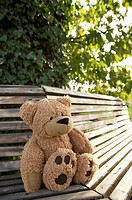 Teddy bear on a wooden bench, selective focus