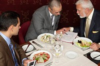 Three businessmen having a business lunch