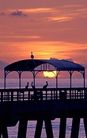 Silhouette of pelicans on a pier at sunset, Lake Worth, Florida, USA