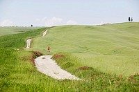 Italy, Tuscany, man jogging in landscape
