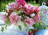 Bowl of pink roses