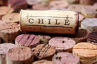 Wine corks from Chile