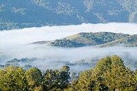 Panoramic landscape with clouds over green spring hills