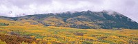 Autumn clouds at Kebler Pass, Gunnison National Forest