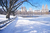 Park benches with snow in Central Park, Manhattan, New York City, NY