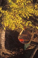 Canoe in Autumn (thumbnail)