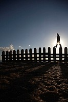 Man Walking Along Pilings of a Dock