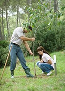 Man and teenage girl planting tree
