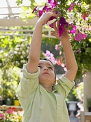 Boy reaching for hanging basket