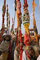 Procession of the sadhus during the ardh khumb h mela
