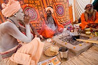 Sadhus from the Juna Akhara smoking Ganja inside their campment. Ardh Kumbh Mela 2007 in Prayag. Allahabad