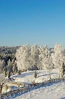 Snolandskap med gardesgardar,Asens by, Aneby kommun, Smaland, Sverige