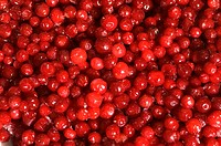 Close-up of a heap of cherries