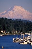 USA, Washington State, Mount Rainier from Gig Harbour