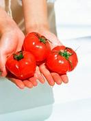 Holding fresh tomatos