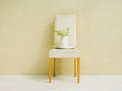 Lilac in white china pot on chair