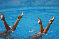 Synchronized swimming pair
