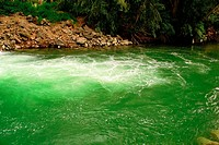 High angle view of green water in a river, Jordan River, Galilee, Israel