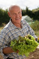 Senior man in checked shirt holding fresh leaf vegetable in garden, smiling, close-up, portrait