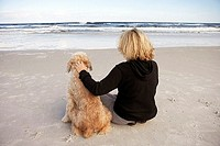 Woman sitting beside dog on sandy beach, looking at horizon over sea, rear view