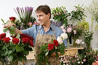 Male florist working in flower shop, checking red rose, smiling (thumbnail)