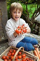 Boy 7-9 sitting on garden steps beside basket, holding fresh tomatoes, smiling, portrait