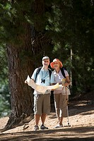 Senior couple hiking on woodland trail, man holding map, woman using hiking pole, smiling, front view