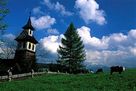 Poland, near Zakopane, wooden church