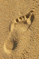 Close-up of a footprint in the sand