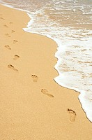 Footprints in sand walking next to foamy ocean edge
