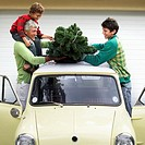 Family Putting Christmas Tree on Car