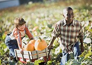 Two boys pulling wagon through pumpkin patch